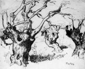 """""""Stare drzewa oliwne I"""", Francja, ok. 1920-1930<br>tusz na papierze<br>31,6 x 38,4 cm"""